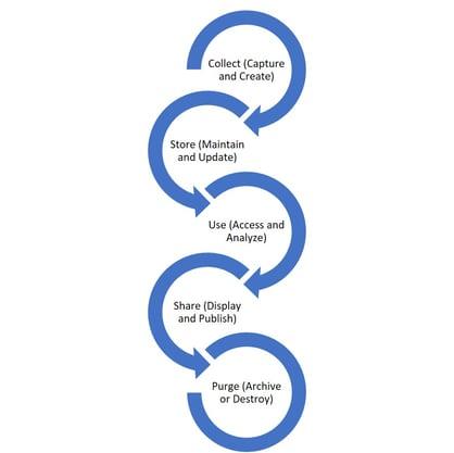 DataManagementLifecycle